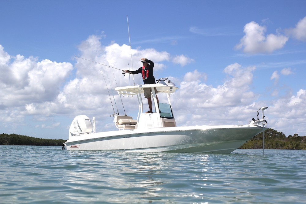 5-boston-whaler-240-dauntless-pro